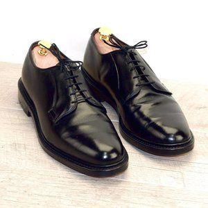 Allen Edmonds LEEDS 9.5 D * new AE Shoe Bags